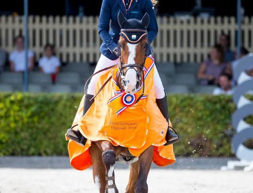 Devina`s daugther becoms Netherlands Champion!